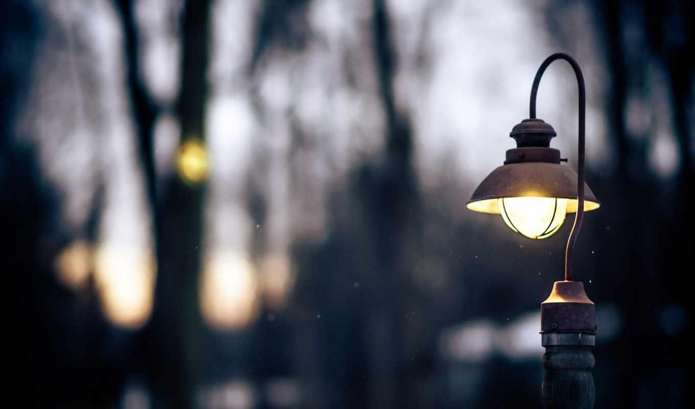 фонарь, фокус, закат, деревья