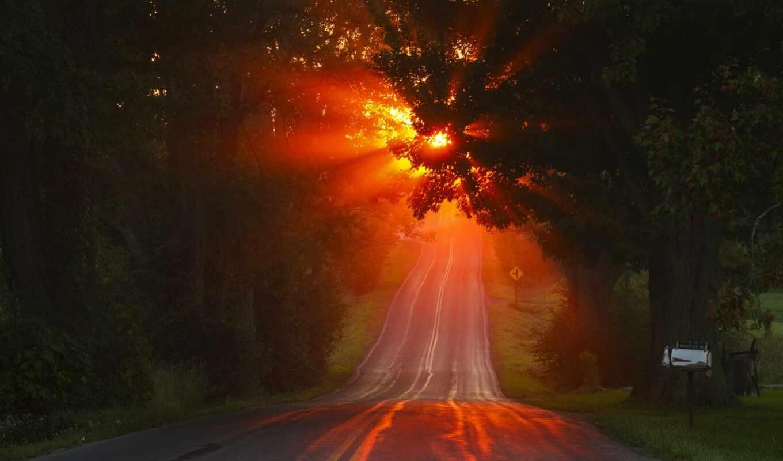 закат, дорога, дерево, long, sunbeam, mac