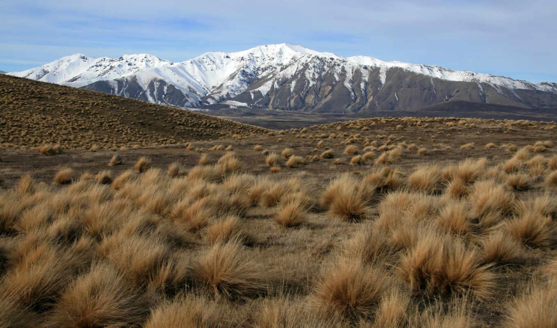 степь, горы, природа, landscape, трава,
