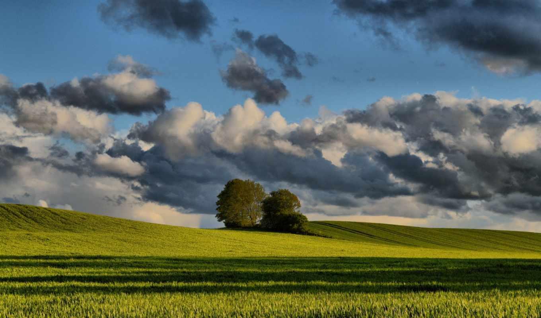 природа, часть, qhd, landscape, photos,