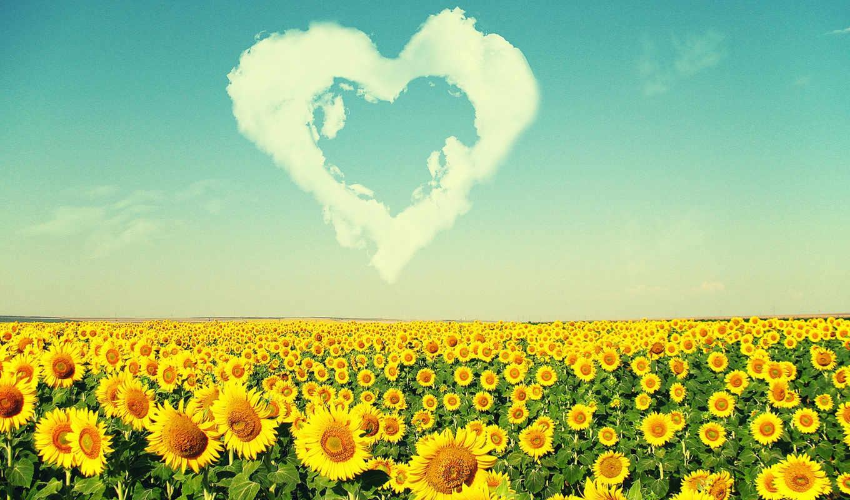 amour, природа,