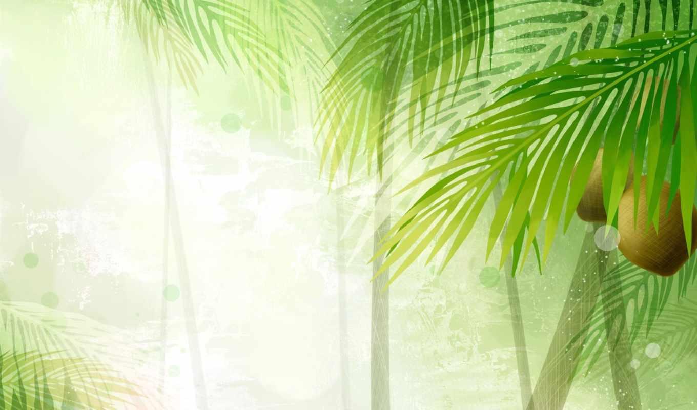 coconut, year, ago, over, walpaper, flower, pulpit, twojego, tapeta, tabletu, kwiaty, art, lub, jest, doskonałą, pobierzesz, 幻彩植物花卉背景图片, tree, nature, siebie, dla, zależności, jaką, telefon, komputera