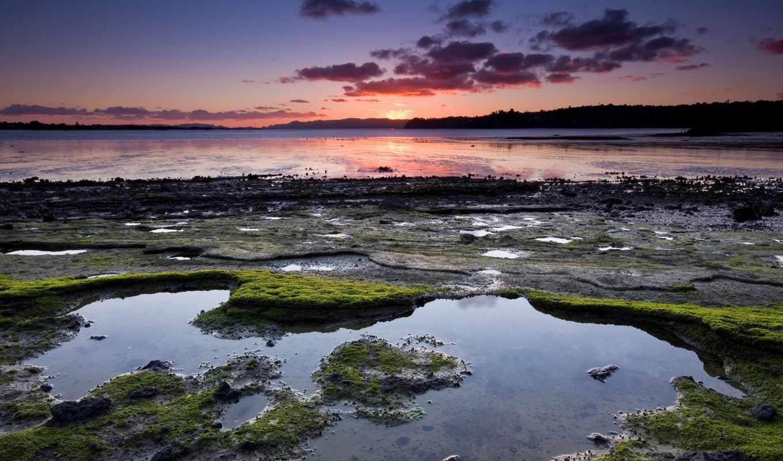 берег, речной, мох, грязь, national, park,