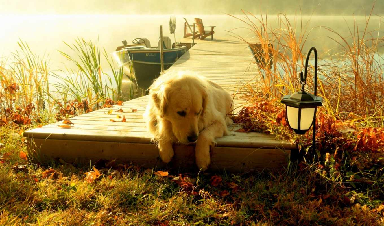 priroda, osen, krasivo, reka, рыбалка, туман, отдых, разделе, лодка, утро,