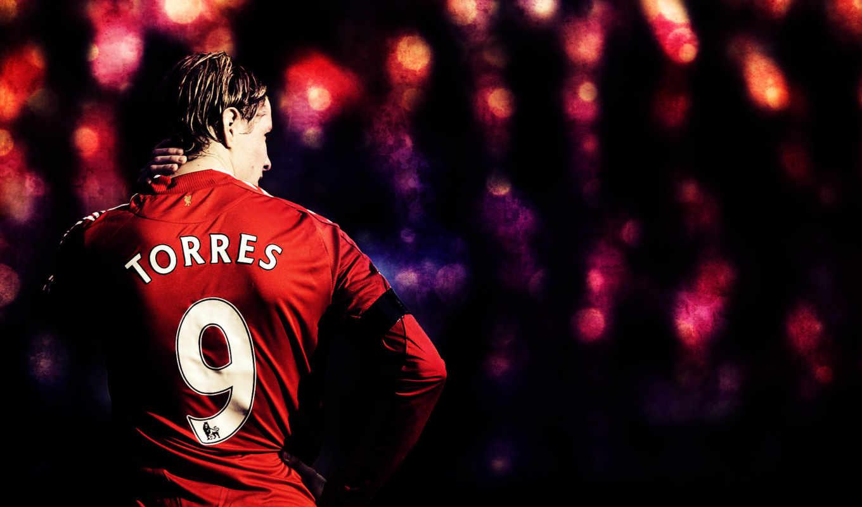 фернандо, ливерпуль, спорт, футбольные, клубы, football, со, спины, картинку,
