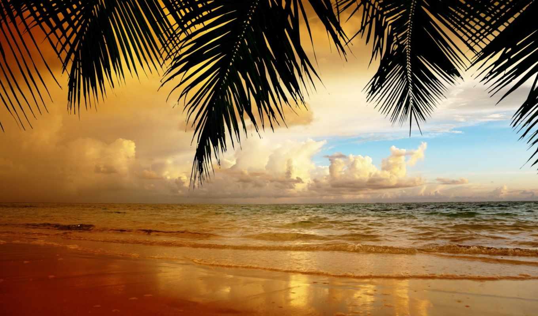 пляж, landscape, песок, небо, облака, природа, закат, море, пальмы,