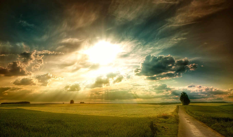 сол, paisajes, campos, papéis, céu, parede, del, cielo, nuvens, árvores, rboles,