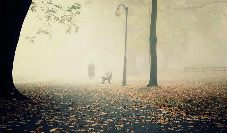 пейзаж, туман, скамья, парк, будто,