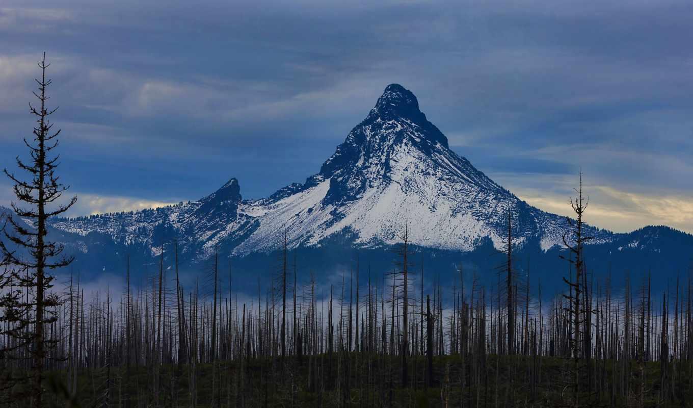 ,гора,лес,снег,туман, облока,