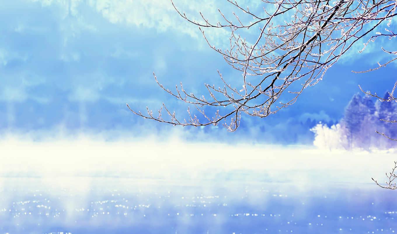 zima, лес, priroda, словения, пейзаж, ozero, les, озеро,