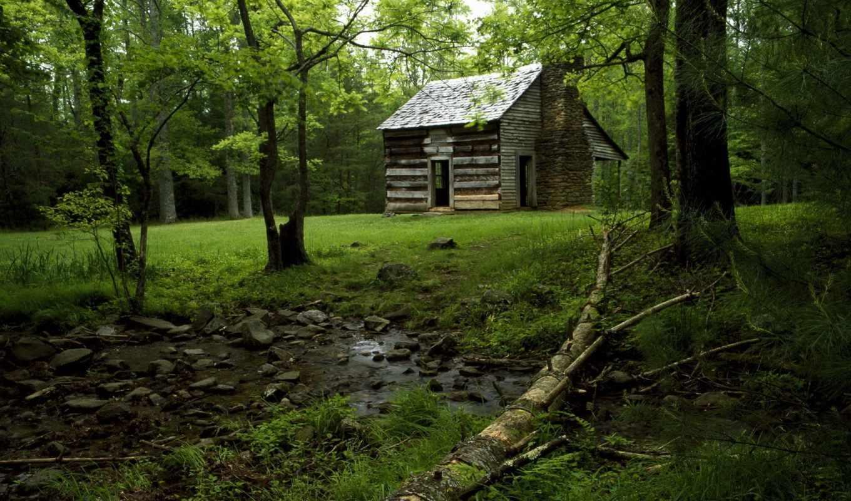 house, лес, банка, тематика, lodge, лесу, деревенская,
