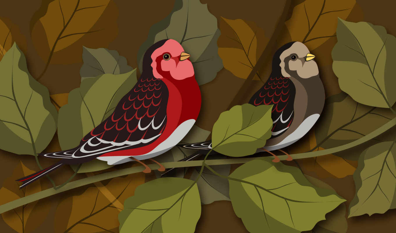 birds, psd, illustration, vector, download, material, layered, birdies,