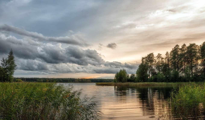 пейзаж, деревья, река, тростник, закат, картинка, озеро, небо, картинку, кнопкой, облока, мыши,