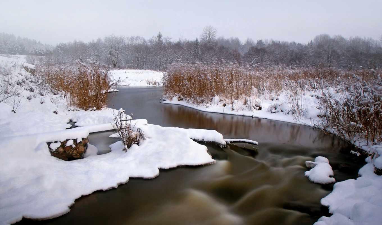 снег, winter, фото, photos, лес, река, preview, камыш,
