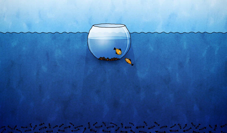 аквариум, facebook, рыбы, рисунок, fotoğrafı, vladstudio,