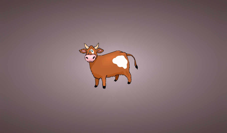 cow, минимализм, зооклубе, картинка, животных,