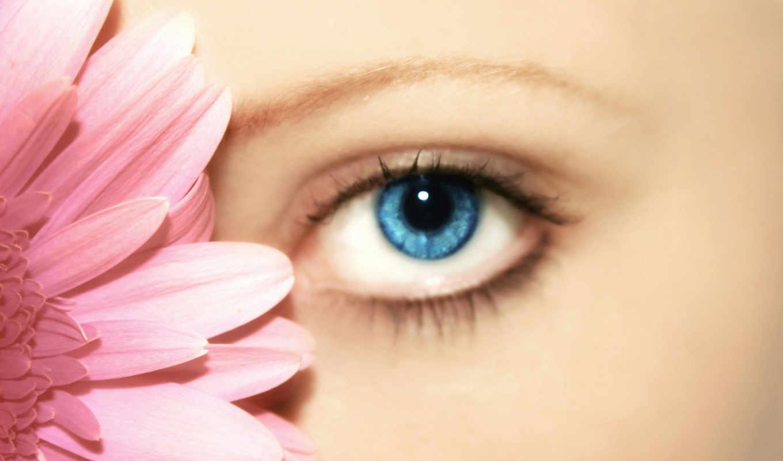 eyes, глаз, flower, красоты, гербера, with, салон,