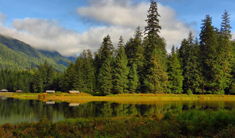 янв, постройки, без, problem, деревя, всяких, лес, озеро, пейзажи -,