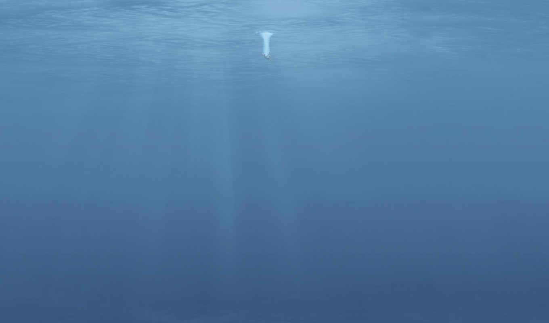 человек в воде, скачать обои