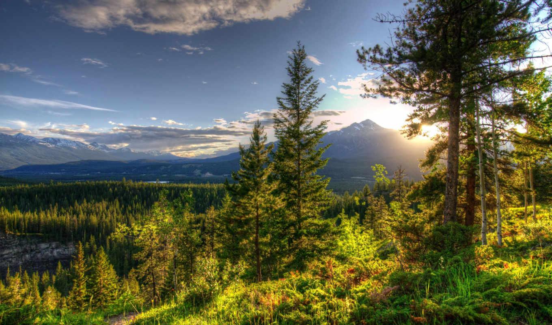 природа, истинном, обою, смотреть, парки, landscape, размере, небо, облака,