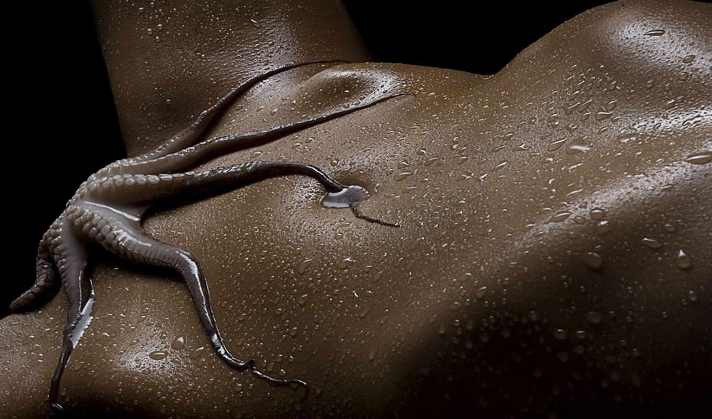 осьминог, девушка, тенктакли, ноги, тело, маклайн, yang,