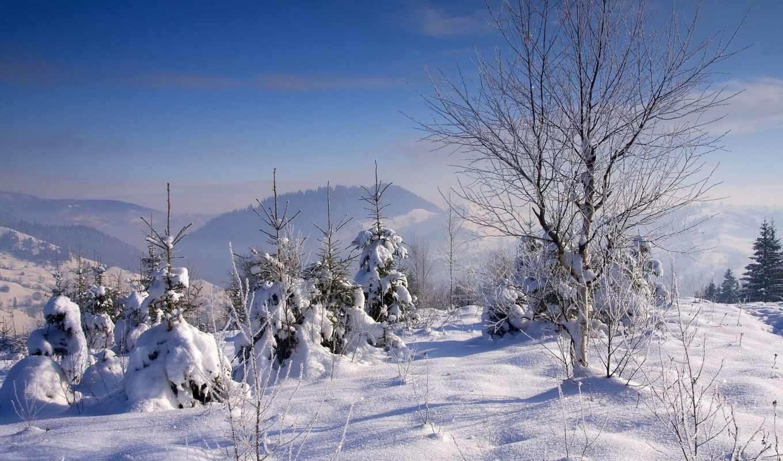 resimleri, winter, manzara, landscapes, christmas, природа, landscape,