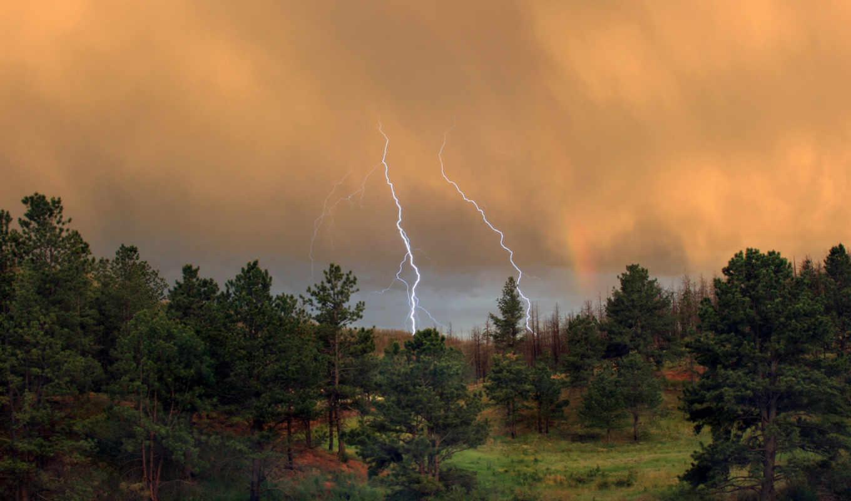 лес, молния, тучи, гроза, картинка, hd, wallpapers, картинку, storm, wallpaper,