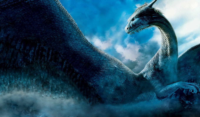 дракон, заставки, posted, пара, tagged, драконы, дракона, splash,