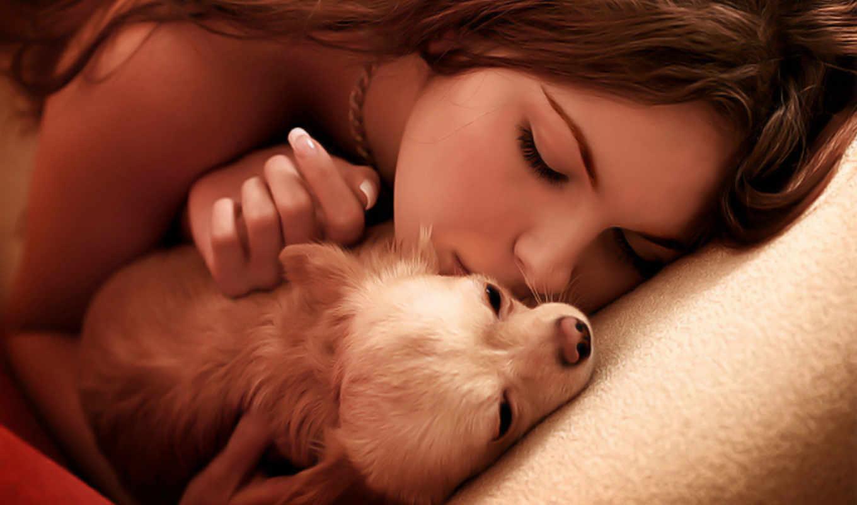 девушка, собаки, целует, собака, собаку, zhivotnye, собачкой,