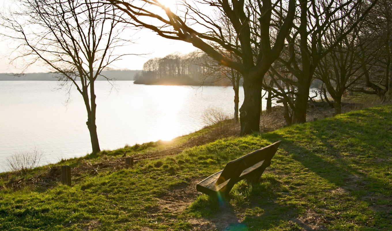 скамейка, деревя, озеро, газон, sun, животных, часть, янв, весна, дек,
