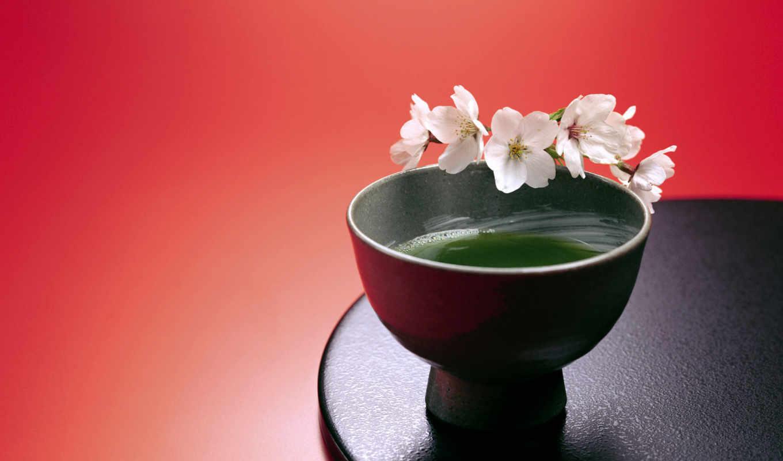 japanese, still, life, tea, taza, use, download, отличных, elegance, сборник, jap, japelegance,