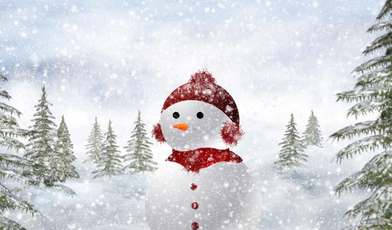 christmas, snow, decorations, ideas, нояб, tree, decorating,