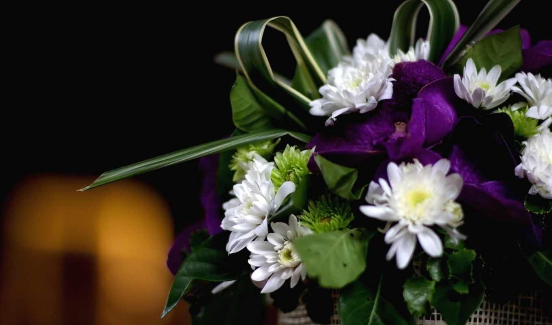 цветы, орхидеи, дек, article, dual, хризантемы, букет, зелёный, sirisakb,
