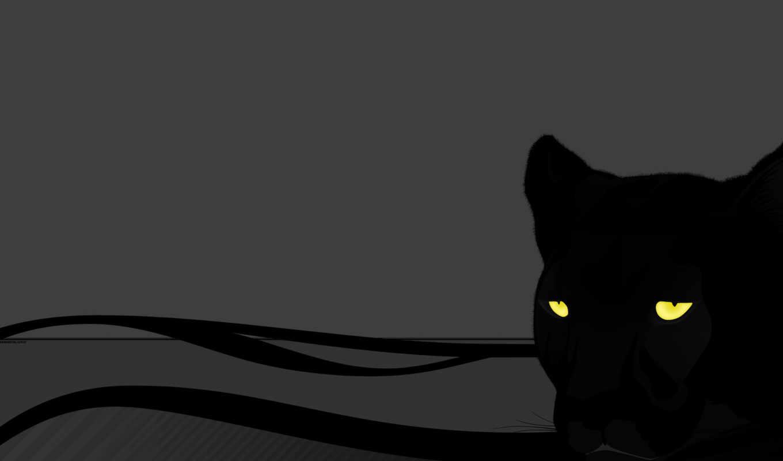 panther, серый, кошка, глаза, пантера, ago, months,