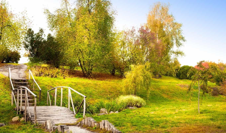 осень, мост, пейзаж, старый, ступеньки, трава, деревья, мыши, кнопкой, картинка, картинку, правой, save, выберите, разрешением, ней, скачивания, листья,