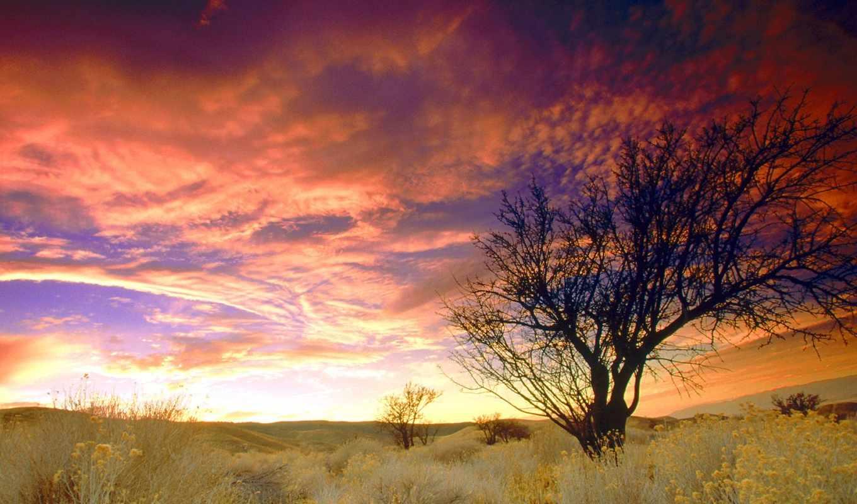 небо, красивое,