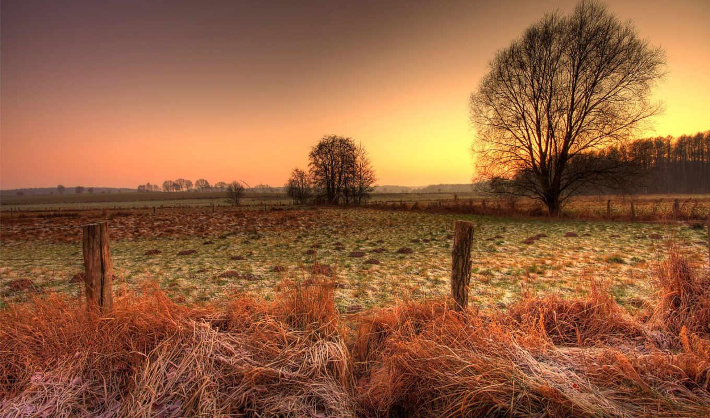 поле, небо, забор, природа,
