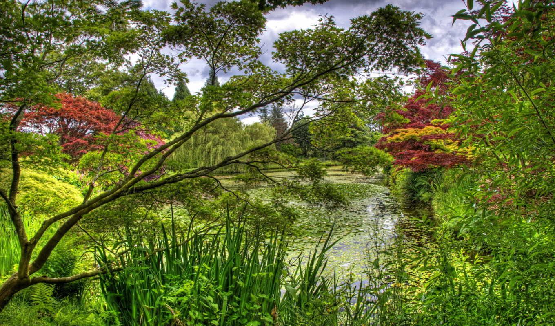 природа, красивые, summer, пейзажи -, vancouver, botanical, деревя, февр, vandusen, сады,