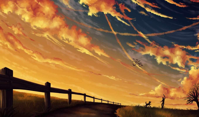 langit, sore, птица, небо, narrow, мужчина