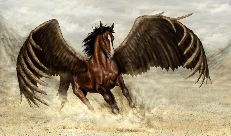 пегас, лошадь, магия, цветы, крылья,
