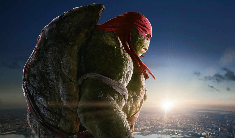 ninja, turtles, mutant, черепашки, usa, июл, teenage, country, год,