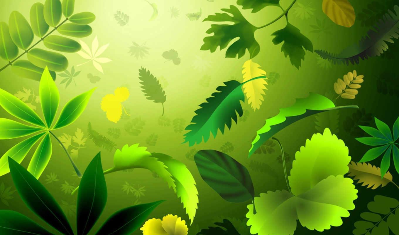 fondos, листья, green, psd, sources, about, зеленые,