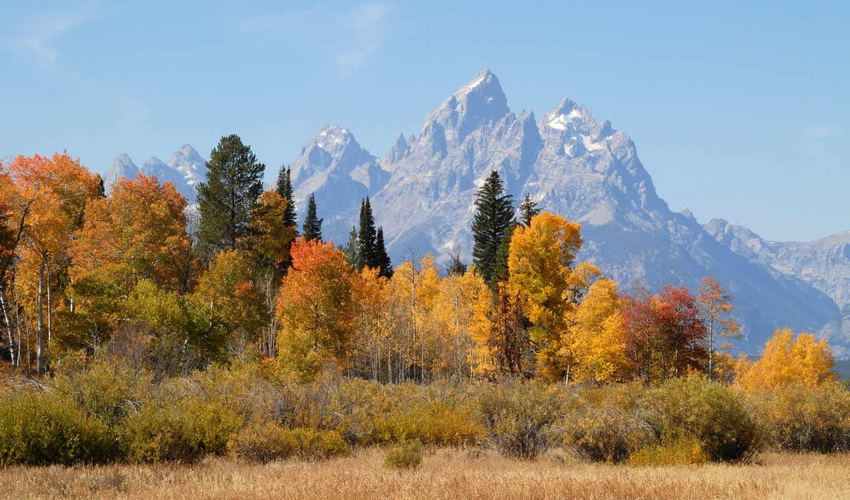 ,осень,деревья, горы,