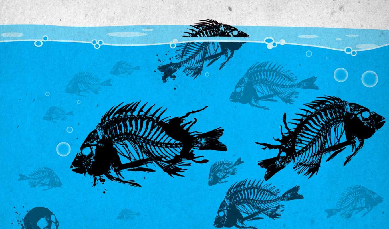остов, рыбы, кости, взгляд, краска,