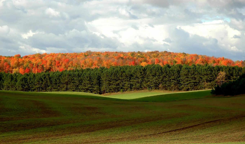 природа, красивые, бесплатные, широкоформатные, осень, категория, природы, пейзажи -,