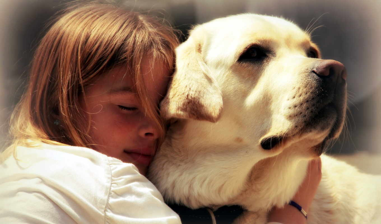 собака, ребенок, собаки, собак, собаке, если, бе, ребенку,