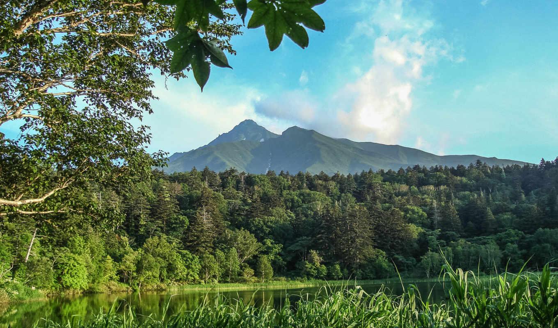 природа, горы, деревья, landscape, река, xara, облака, разделе, pro, designer,