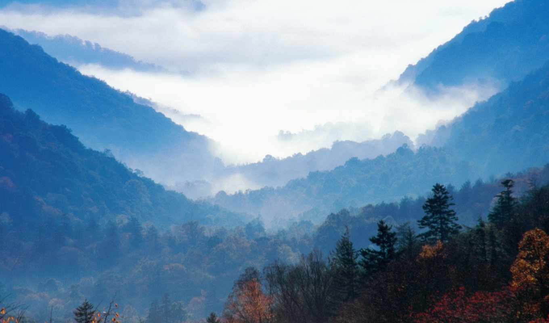 природа, great, mountains, дымчатый, tennessee, eva, national, park,