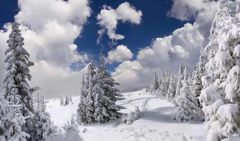 картинок, пейзажи -, красивые, природы, подборка, everything, margin, rylik, страница,