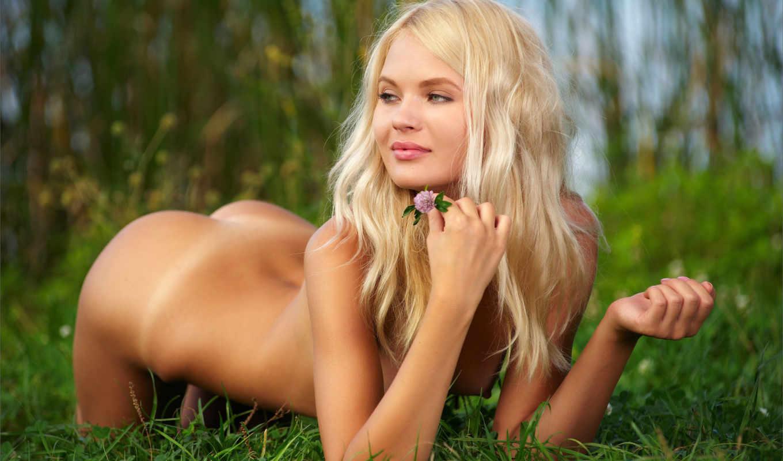 Goldilocks pics